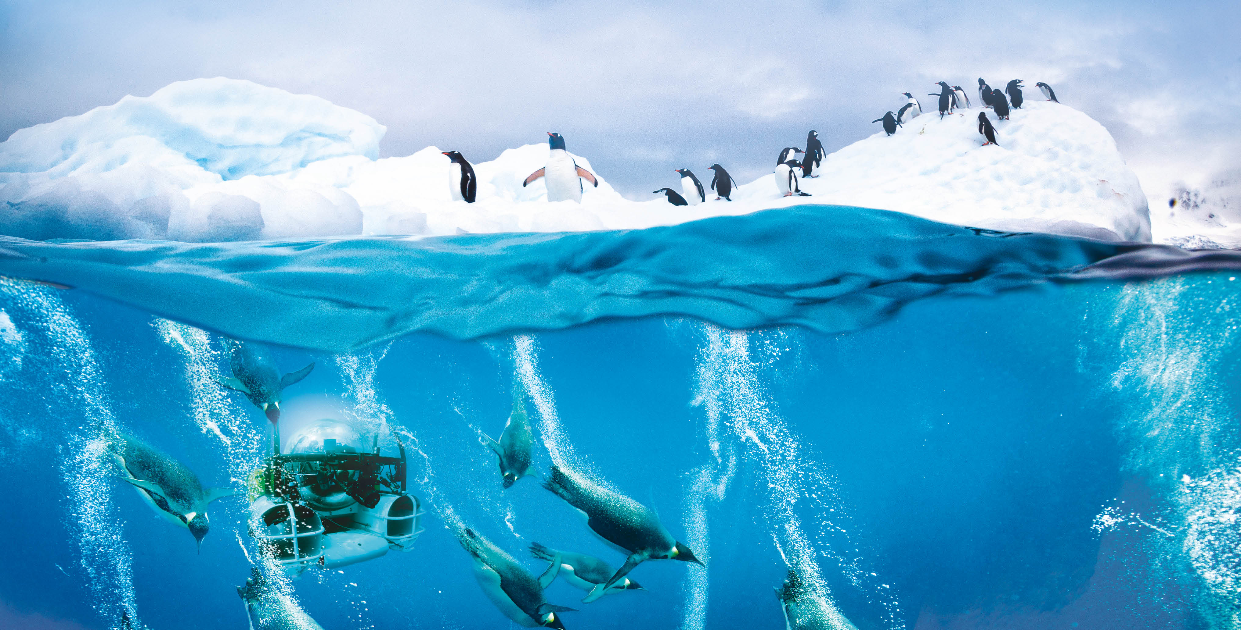 Diving underwater with the penguins in a submarine