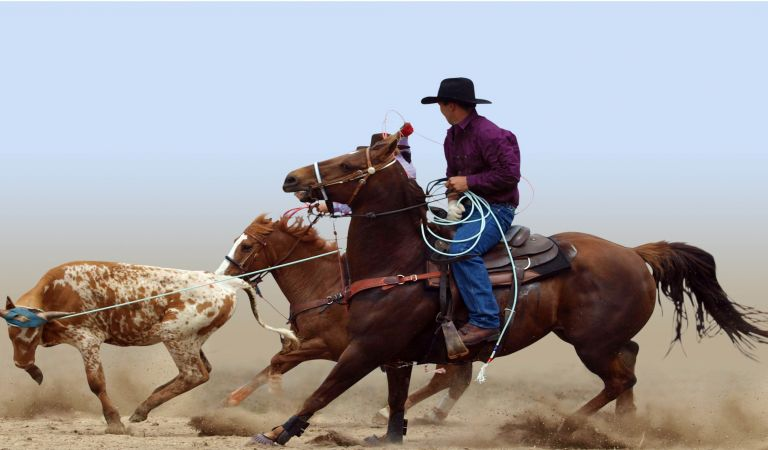 Calgary Stampede And The Rockies 2018 Select Travel Holidays